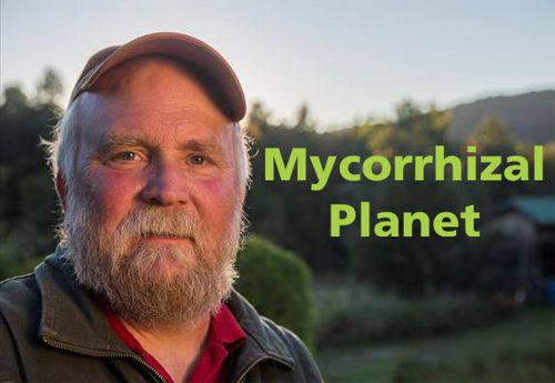 Mycorrhizal Planet: How Fungi and Plants Work Together to Create Dynamic Soils by Michael Phillips